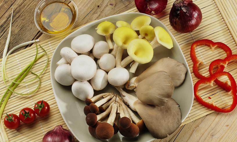Nasce il Fungo Italiano Certificato