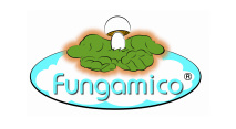 Fungamico