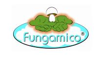 Fungamico