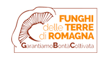 Funghi terre Romagna