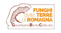 Funghi terre Romagna