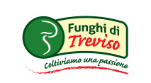 Funghi di Treviso