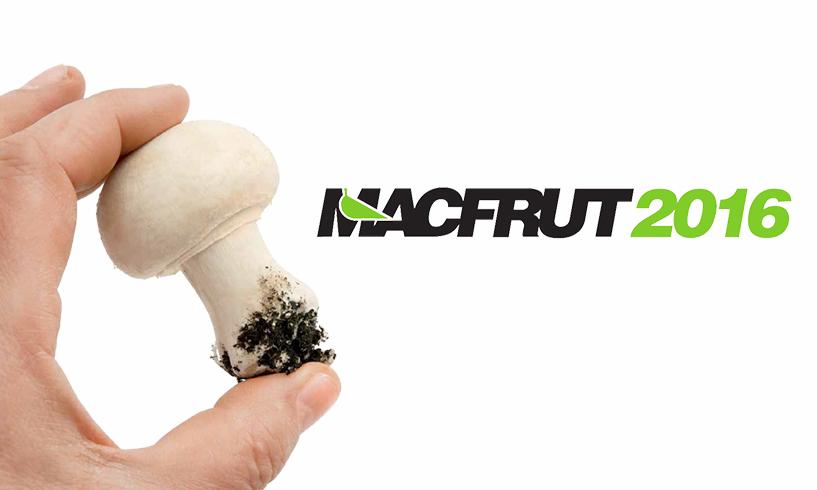 Macfrut 2016: il Fungo Italiano Certificato parteciperà all'edizione 2016